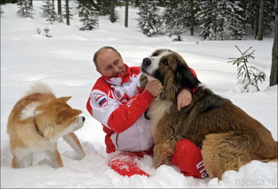 Владимир Путин на прогулке (6 фото)