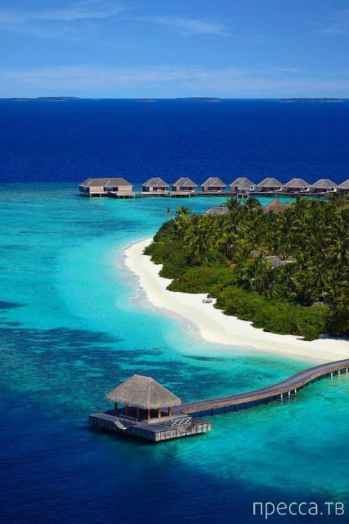 Райский уголок - Баа Атолл - Остров в Dusit Thani, Мальдивы (36 фото)