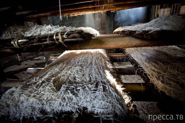 """""""Технологичное"""" производство макарон в Индонезии. Всем приятного аппетита (18 фото)"""