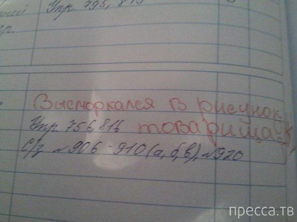 Неординарные записи в школьных дневниках (6 фото)