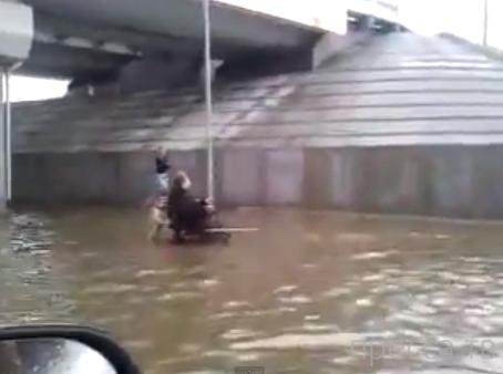 Собака - настоящий друг - помогает хозяин-инвалиду во время потопа...