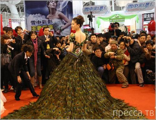 Свадебное платье из павлиньих перьев за $1,5 миллиона долларов (5 фото)