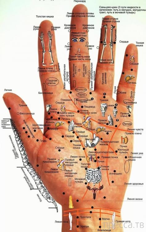Болезни и рука - сделай себя здоровым!