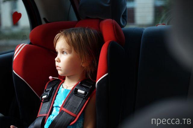 Полезные советы для путешествующих на автомобиле (5 фото)