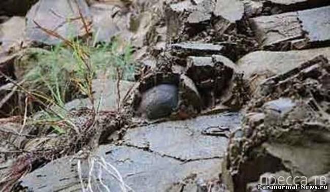Яйценосные скалы в Китае (5 фото)