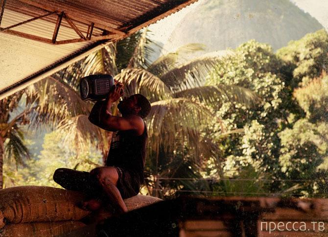 Как в Бразилии собирают кофе (24 фото)