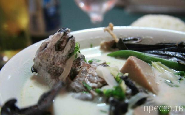 Самые необычные супы со всего света (11 фото)