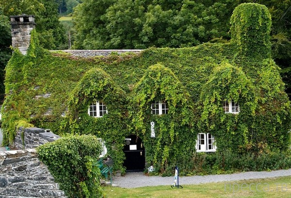 Нереально красивое графство Девоншир (29 фото)