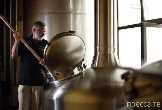 Необычные услуги в пивоварне Мюнхена (6 фото)
