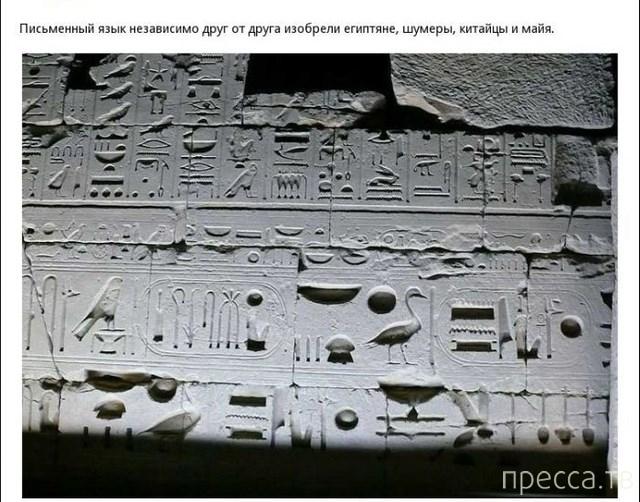 Интересные факты обо всем на свете, часть 25 (13 фото)