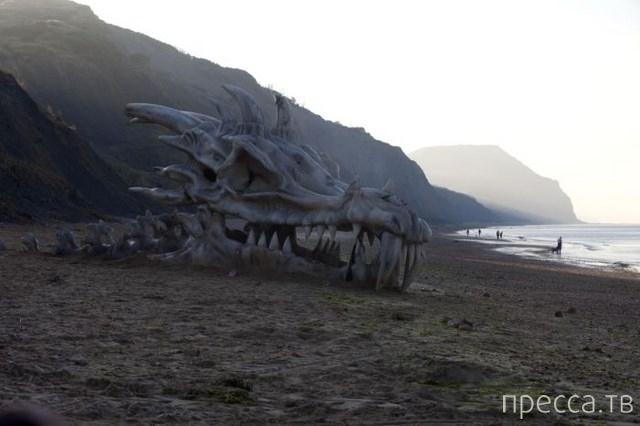 Классная достоверная инсталляция головы дракона на побережье Великобритании (5 фото)