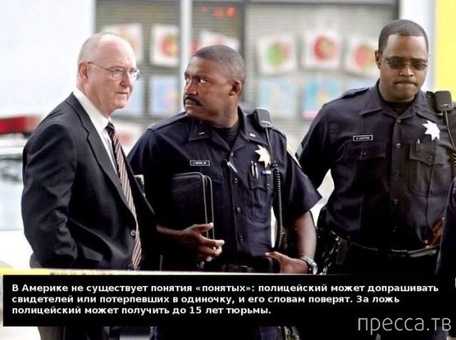 Познавательно о полиции в США (10 фото)