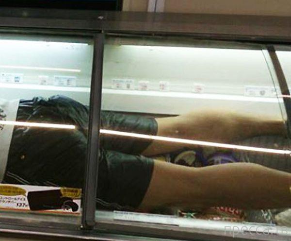 Спасался от жары в холодильнике с мороженым (5 фото)
