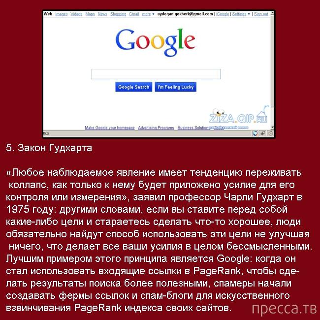 Законы, по которым живет Интернет (11 фото)