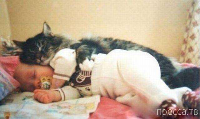 """Подборка прикольных фотографий на """"Понедельник"""", часть 3 (110 фото)"""