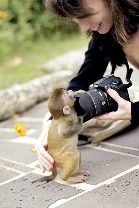 Необычные фотографии (20 фото)