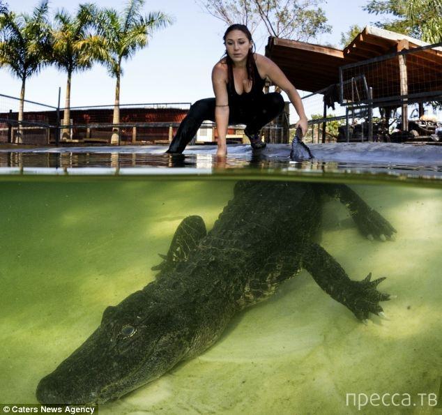 Американка Эшли Лоурэнс приручила крокодилов (6 фото)