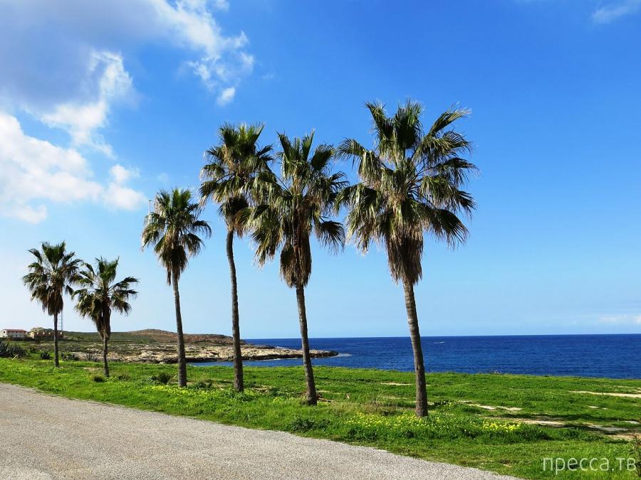 Райские красоты Северного Кипра ... (7 фото + видео)
