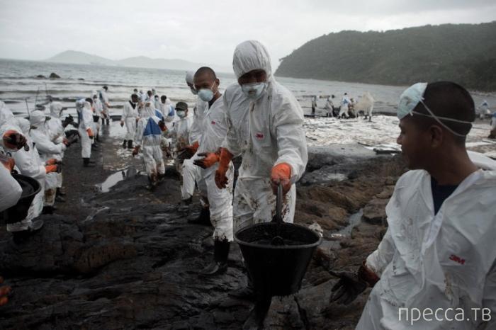 Экологическая катастрофа в Таиланде - побережье залито нефтью (12 фото)