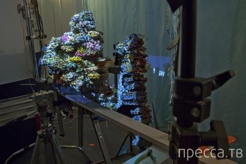 Как делают спецэффекты (8 фото)