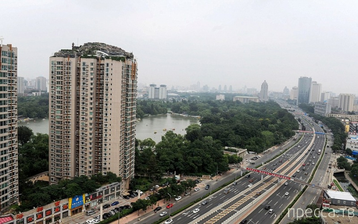 Горная вилла на крыше жилого дома в Пекине (10 фото)