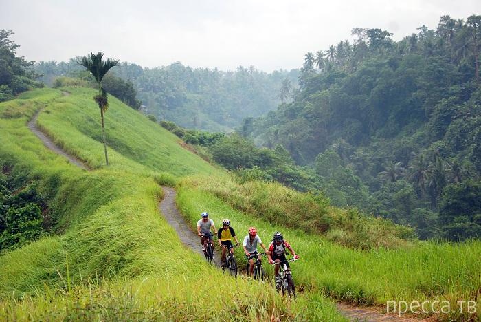 6 вещей, которые необходимо сделать на Бали (6 фото)