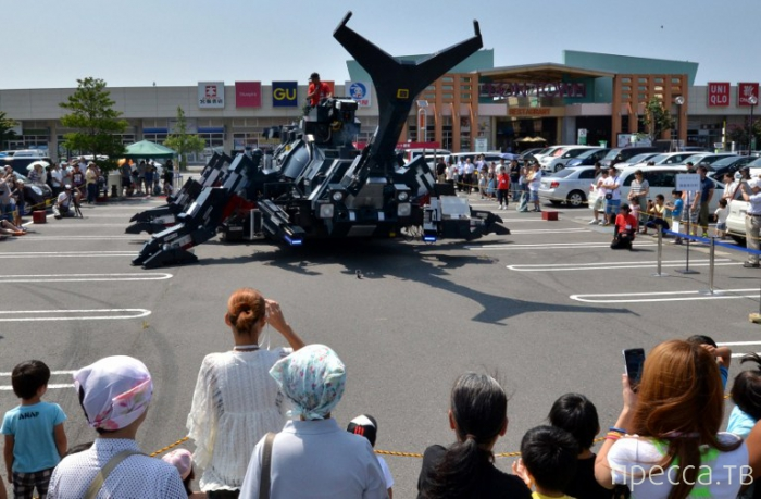 Японский жук-робот (9 фото)