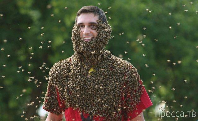Ежегодные соревнования по пчелиной «бороде» в Канаде (5 фото)