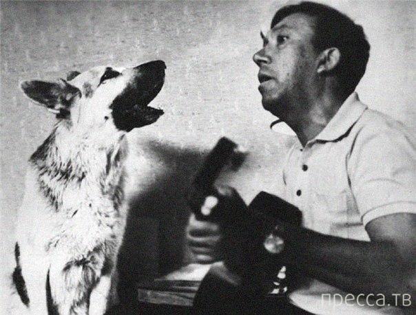 Вспоминая любимых актеров... Юрий Никулин (8 фото)