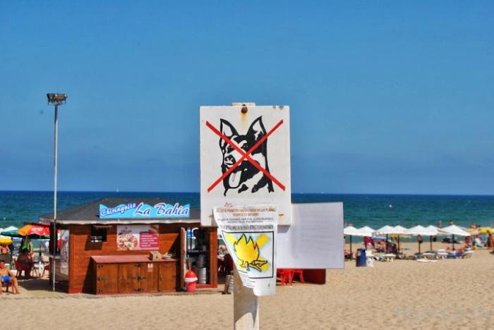 Райское побережье - Коста Бланка (Costa Blanca). Испания. (36 фото)