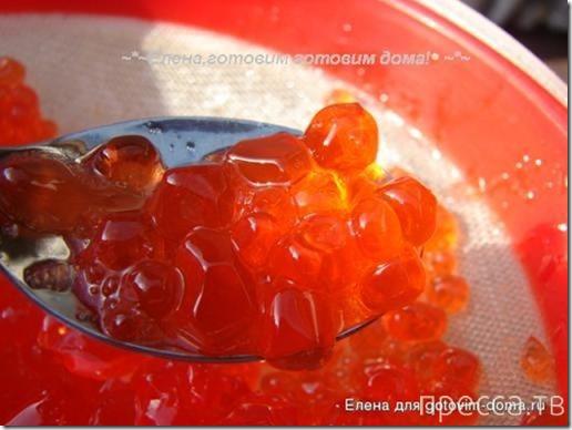Вкуснятинка: Делаем красную икру сами!!! (8 фото)
