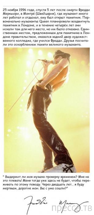 Интересные факты о талантливом и неповторимом певце  — Фредди Меркьюри (21 фото)