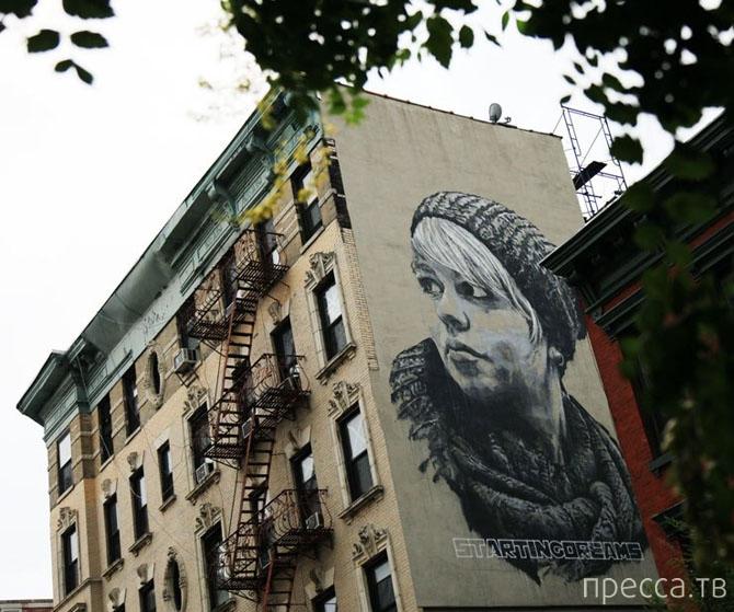Лучший стрит-арт августа (17 фото)