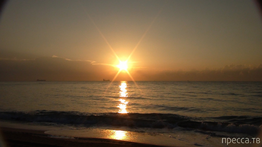 Лето во Флориде (23 фото)