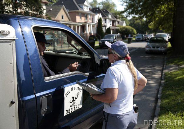Бойцовские собаки оккупируют Детройт (11 фото)