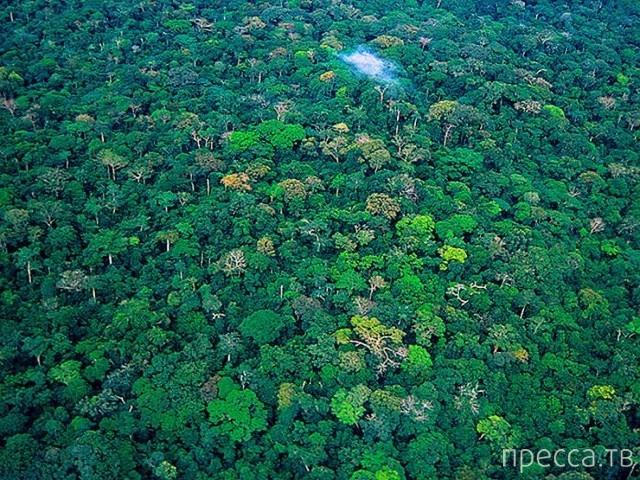 Подборка удивительных мест на Земле, которые, скорее всего, исчезнут до 2030 года (10 фото)