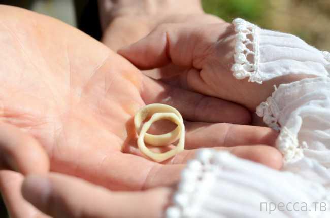 Экономная пара из Шотландии сыграла свадьбу всего за полтора доллара (2 фото)