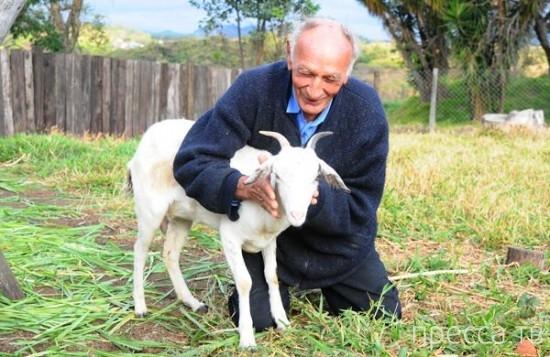 Бразилец хочет жениться на козе в Церкви дьявола (2 фото)