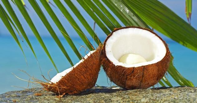 Топ 10: Самые интересные факты о кокосе (11 фото)