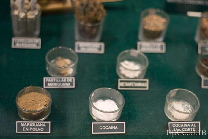Музей наркотиков в Мексике (26 фото)