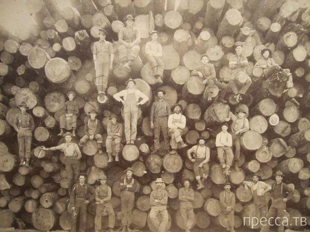 Подборка прикольных фотографий, часть 42 (115 фото)