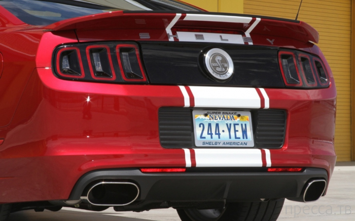 Ford Mustang Shelby GT500 2013 (19 фото)