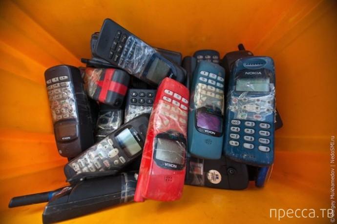 Чемпионат мира по метанию мобильных телефонов (8 фото)