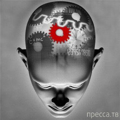 Топ 10: Психологические приемы, которые реально действуют