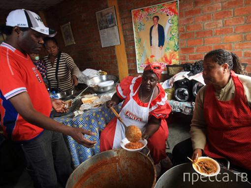 В Перу нажарили праздничных шашлыков из кошек. Жесть!!! (6 фото)