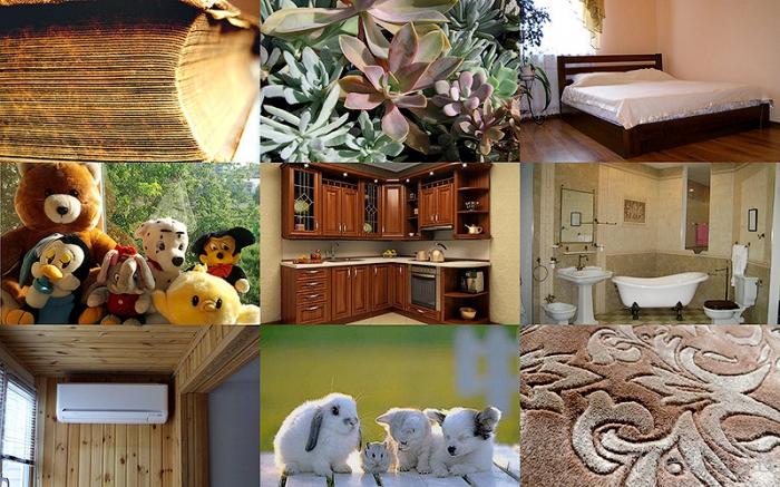 Топ 10: Основные источники аллергии в вашем доме (11 фото)