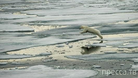 Топ 10: Главные вопросы об изменении климата Земли (9 фото)