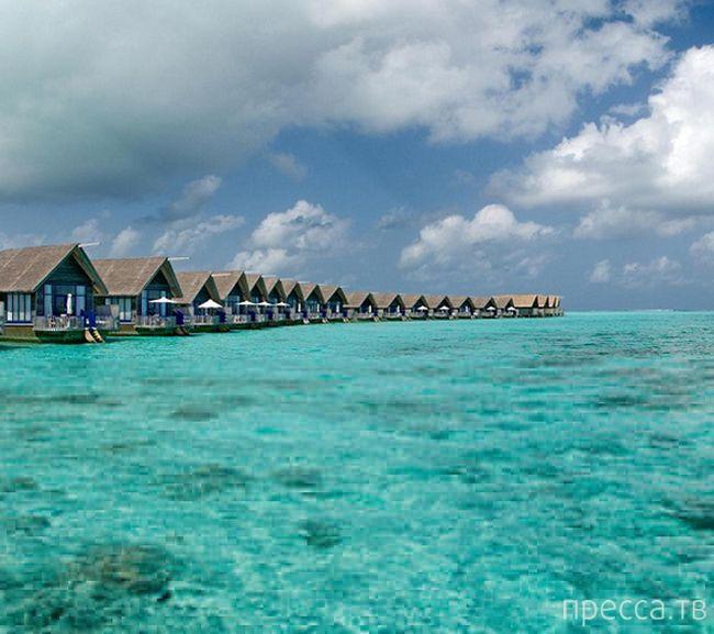 """""""Cocoa Island Resort"""" - отель на лодках, Мальдивы (18 фото)"""