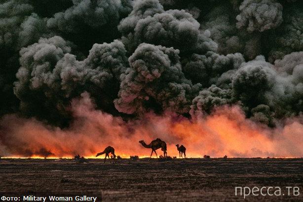 Уникальные работы легендарного фотожурналиста Стива МакКарри (12 фото)