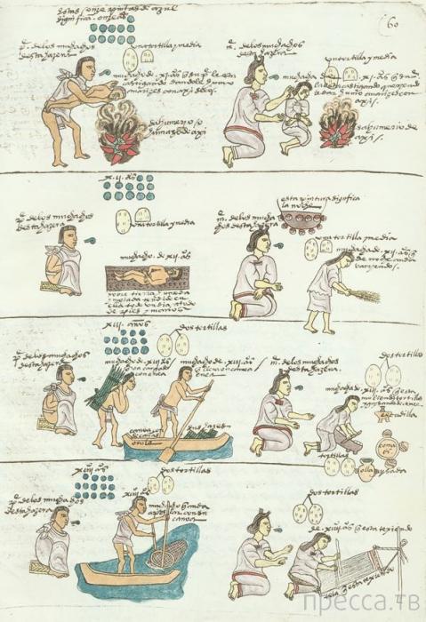 Топ 10: Удивительные факты об ацтеках (12 фото)